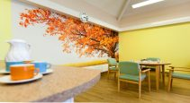 residential healthcare