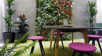 Biophilic Office
