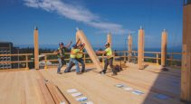 mass timber IPD