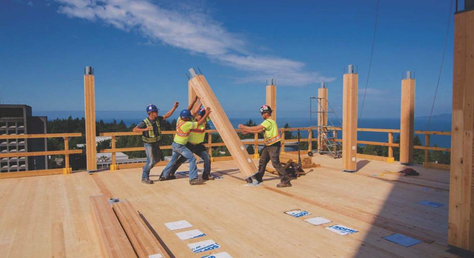 mass timber IPD