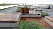 Canadian-landscape-architecture