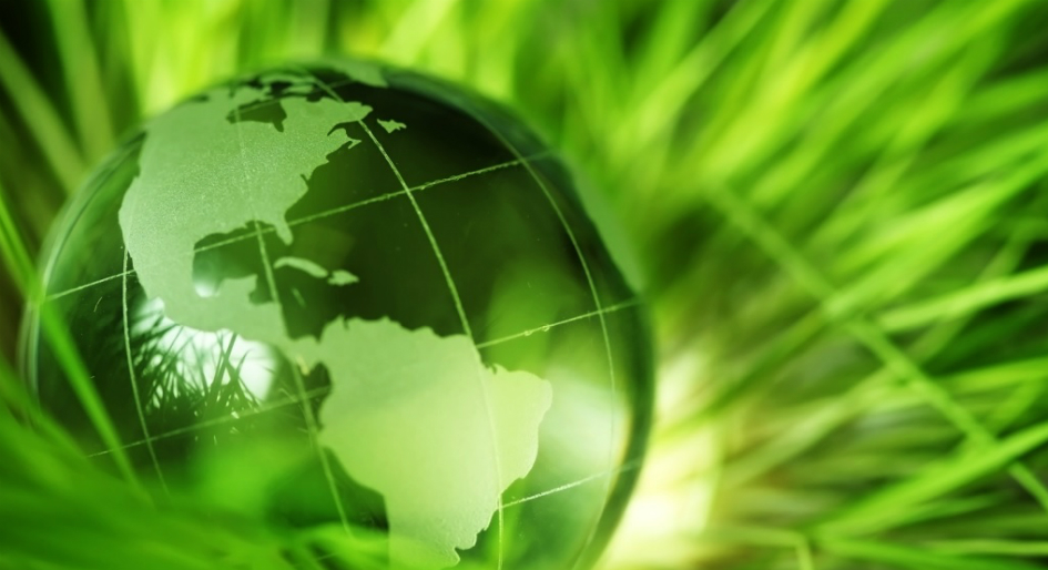 carbon pricing revenue