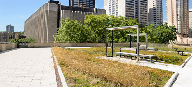 Green Roof Benefits For Buildings