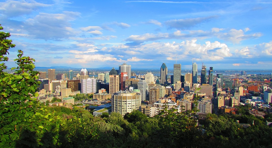 Condo sales lead Montreal real estate activity