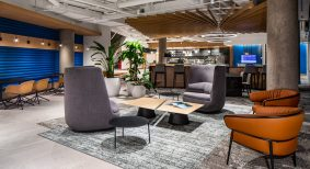 bold renovation workplace
