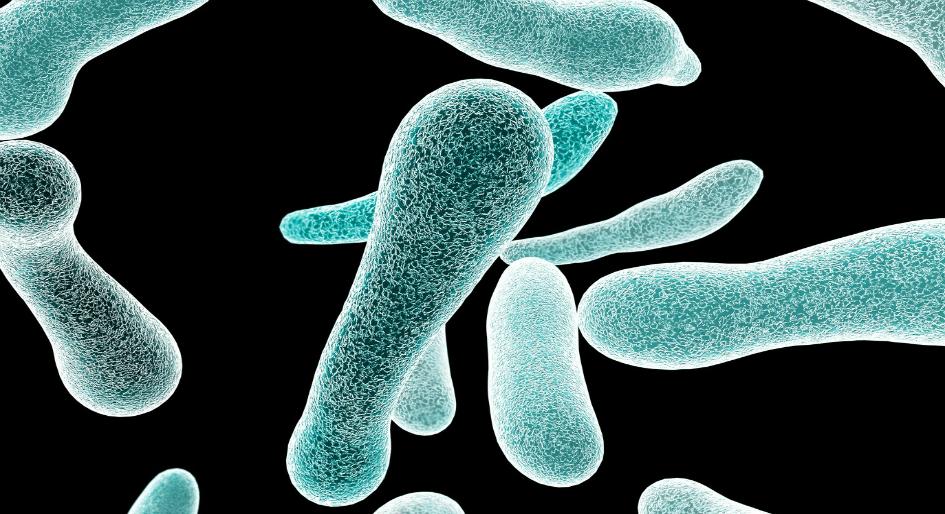 ASHRAE Legionella standard