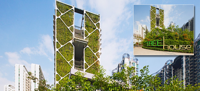 singapore vertical garden sets guinness world record