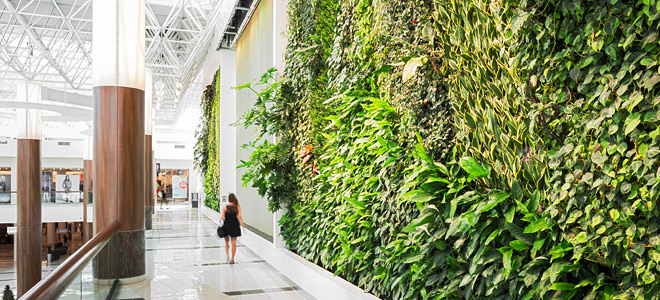 the importance of biophilic design