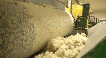 wool insulation